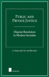 Public and Private Justice