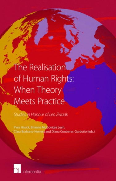 The Realisation of Human Rights: When Theory Meets Practice
