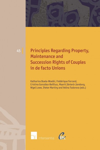 Principles Regarding Property, Maintenance and Succession Rights of Couples in de facto Unions